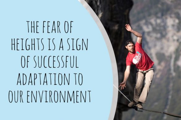 the fear of heights is a sign of successful adaptation to our environment