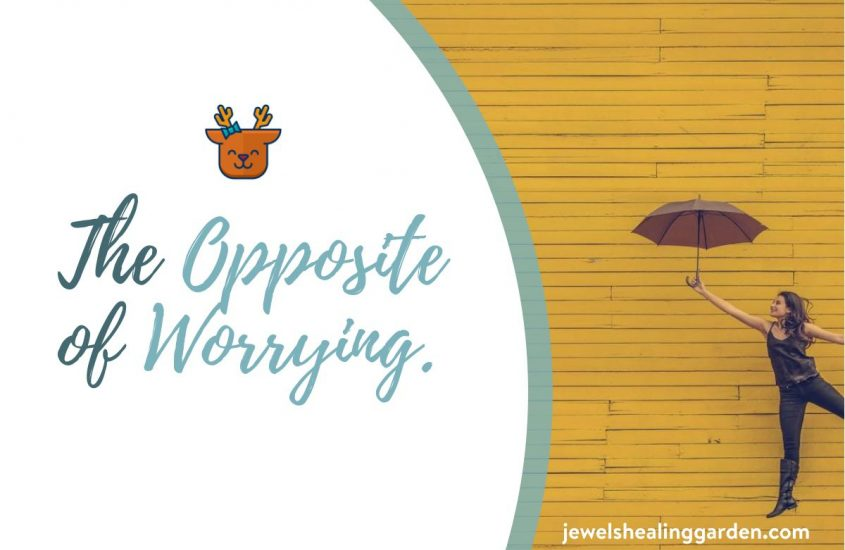 {The} Opposite {of} Worrying.