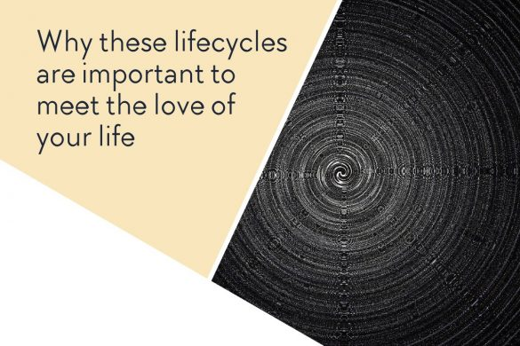 Why these lifecycles are important to meet the love of your life